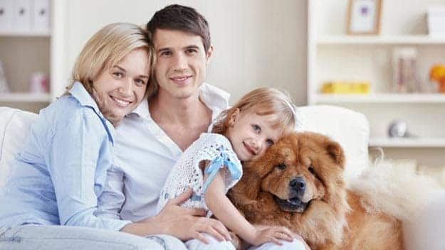 Wills & Trusts dog-young-family Direct Wills Uxbridge